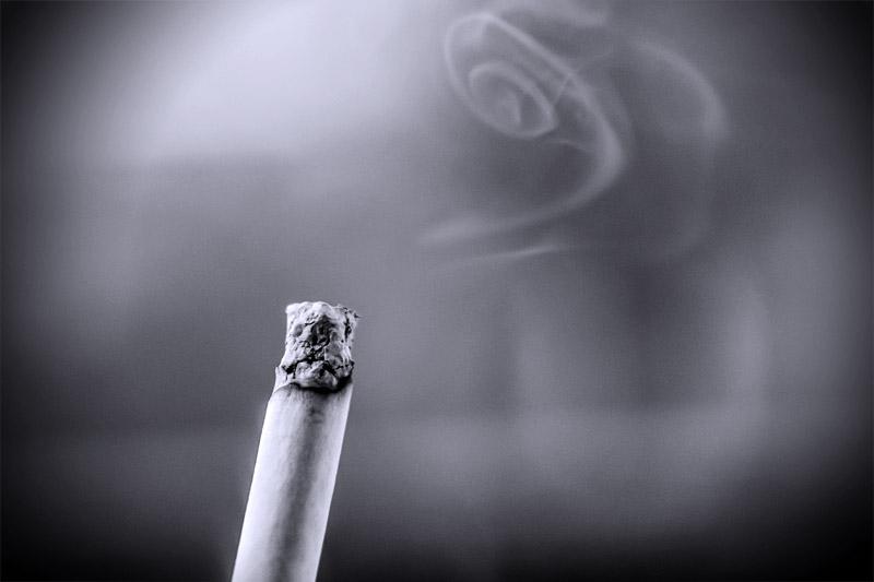 Zigaretten Rauch / Hunde Geruch / Verschüttete Lebensmittel